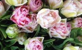 Květen- měsíc slev