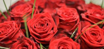 kvetinovyAtelier_362.jpg